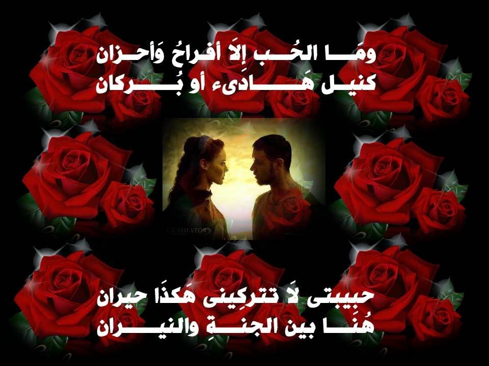 بالصور كلام جميل لحبيبتي , الحب واجمل ما يقال من الحبيب 1244