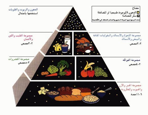 بالصور الاكل المفيد للحامل , طعام للمراه الحامل 2028 2