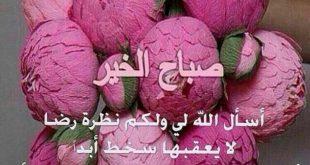 صورة صباح الخير بالورد , اجمل الورود مع كلمات صباحيه هادئه