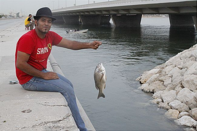 بالصور صور صيد الاسماك , صوره صيد سمك 6591 1