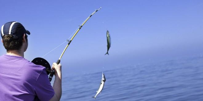 بالصور صور صيد الاسماك , صوره صيد سمك 6591 18