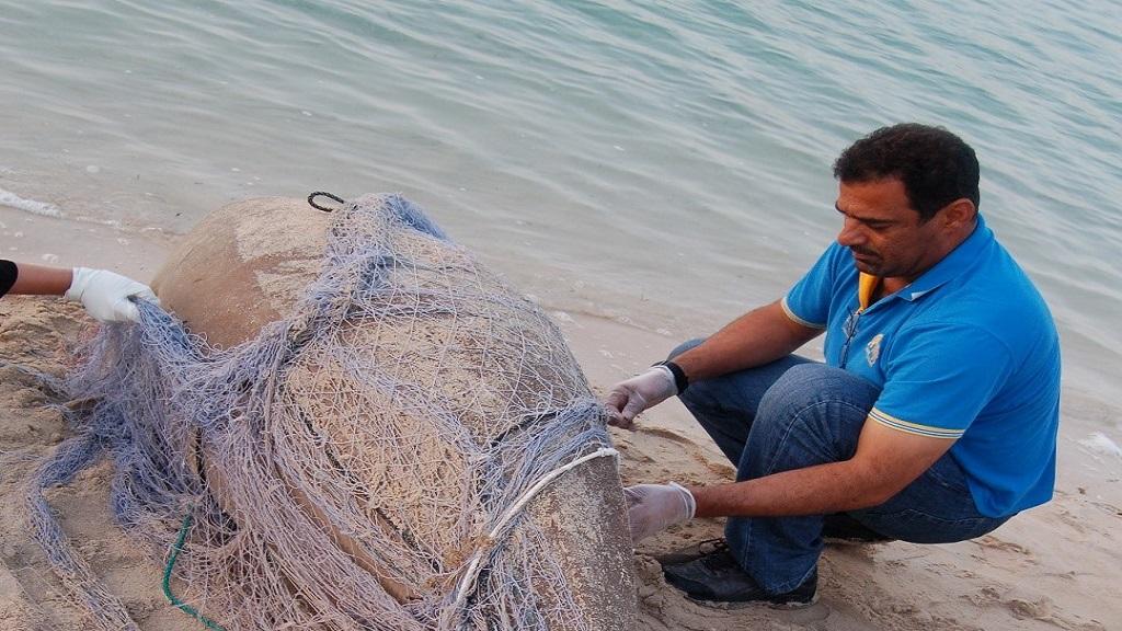 بالصور صور صيد الاسماك , صوره صيد سمك 6591 2