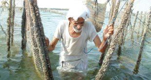 صورة صور صيد الاسماك , صوره صيد سمك