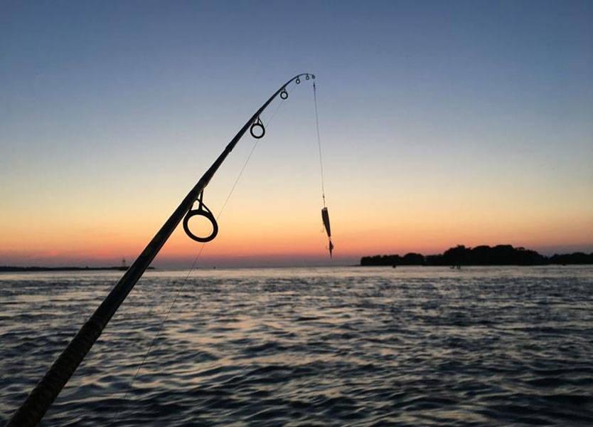 بالصور صور صيد الاسماك , صوره صيد سمك 6591 5