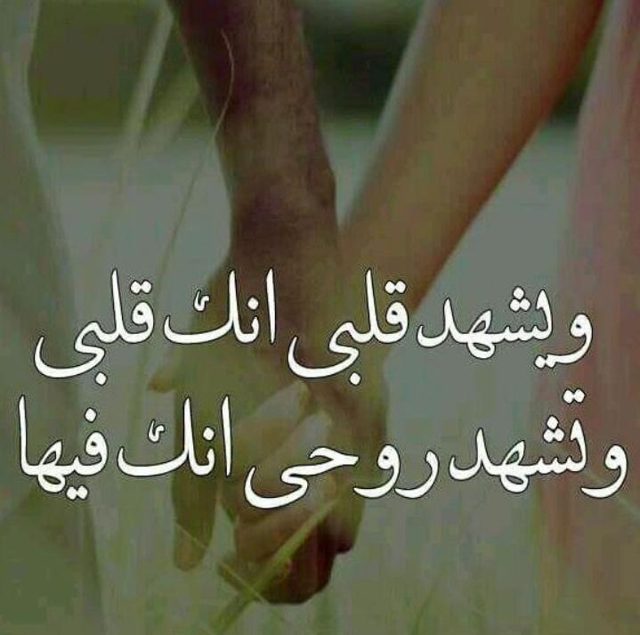 بالصور اجمل صور حب جديد , ارق مظاهر الحب unnamed file 1