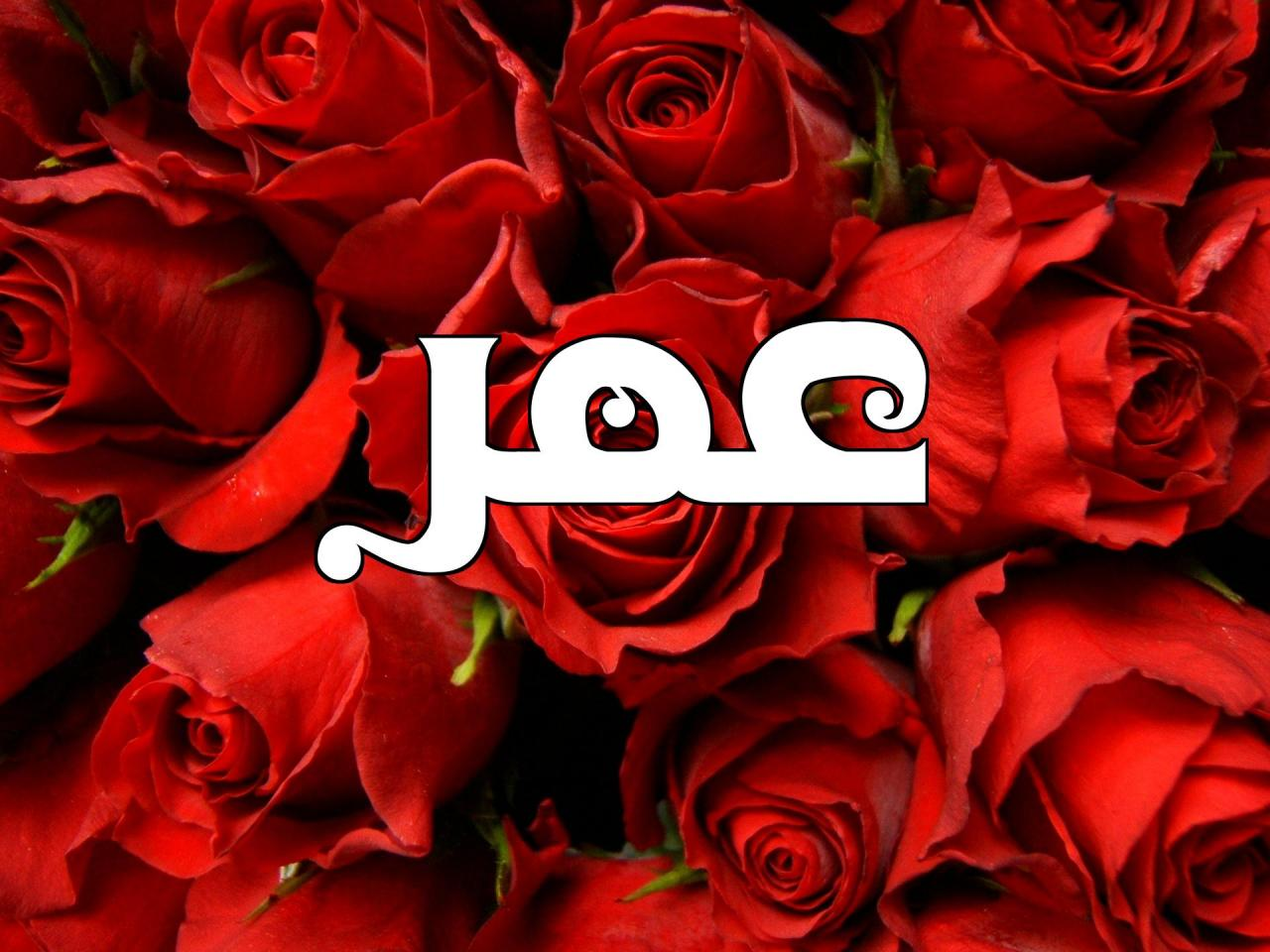 صور صور اسم عمر , اجمل اسماء الاولاد وصور جديده لايم عمر