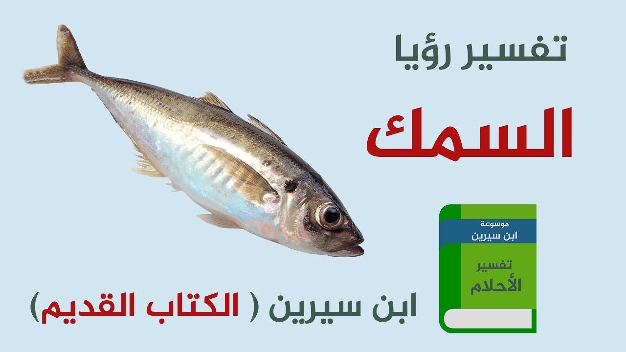 صورة تفسير الاحلام سمك , معنى رؤية السمك في الحلم