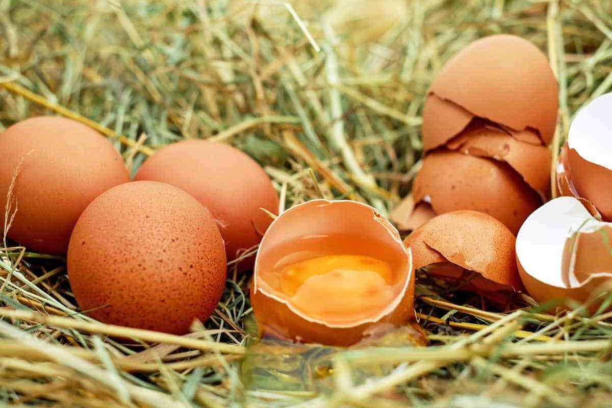 صورة تفسير حلم البيض النيئ للحامل , معنى رؤية الحامل للبيض النيء في المنام 2667 1