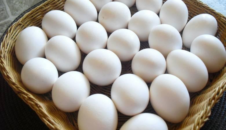 صورة تفسير حلم البيض النيئ للحامل , معنى رؤية الحامل للبيض النيء في المنام 2667