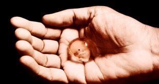 صورة تفسير حلم الاجهاض للحامل لابن سيرين , سقطت جنيني في المنام ما هذا يا الهي؟