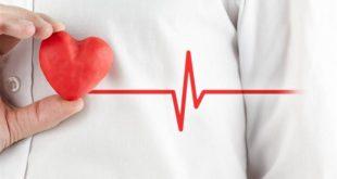بالصور كيف تكون قوي القلب , ان اردت ان تكون قوي القلب عليك بهذه الاشياء 3596 2 310x165