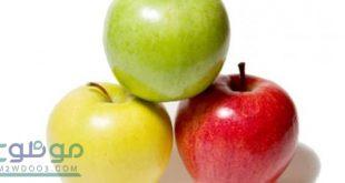 صورة فوائد التفاح لكمال الاجسام , فائده التفاح لكمال الاجسام