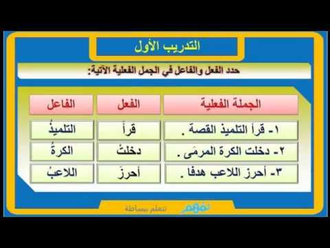 صور جمل اسمية وفعلية , ابسط انواع الجمل فى اللغة العربية