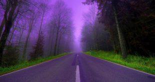 بالصور رؤية الطريق في المنام , طريق فى منامى وما تفسيره 1379 3 310x165