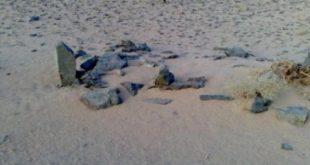 بالصور كيف مات الزير سالم , قصة الزير سالم 2307 3 310x165