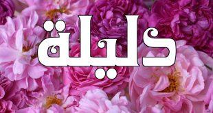 صور اسماء بنات البدو , اجمل اسماء البدويات