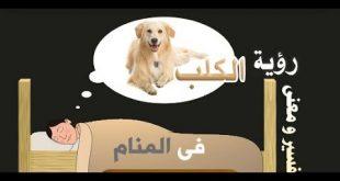 بالصور تفسير رؤية الكلاب , تفسير الاحلام والكلاب وما تدل عليه 284 2 310x165