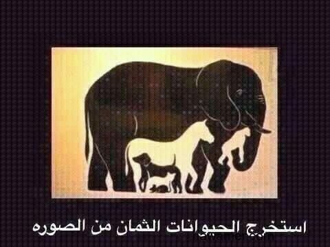 بالصور كم حيوان في الصورة , ابسط الالغاز البسيطة 344 11