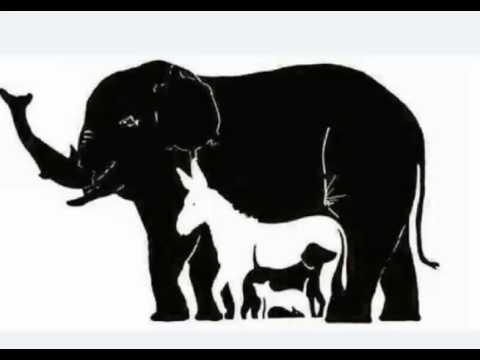 بالصور كم حيوان في الصورة , ابسط الالغاز البسيطة 344