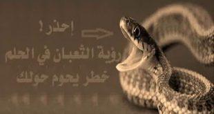 بالصور تفسير حلم الثعابين الكثيره , تفسيرات الاحلام وما تدل عليها 80 2 310x165