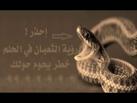 بالصور تفسير حلم الثعابين الكثيره , تفسيرات الاحلام وما تدل عليها 80