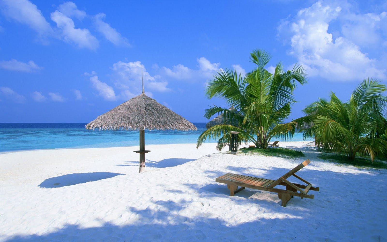 بالصور بالصور جزر المالديف , تفاصيل عن جزر المالديف unnamed file 175