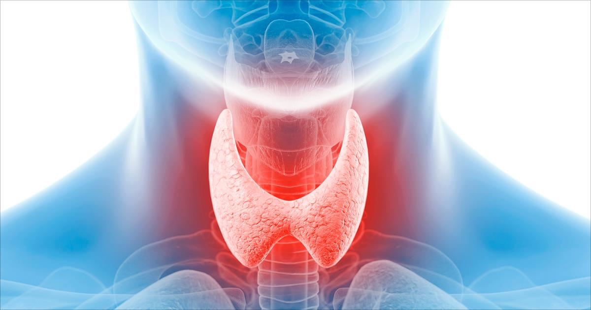 صور لماذا سميت الغدد الصماء بهذا الاسم , السبب العلمي لتسميه الغدد الصماء باسمها