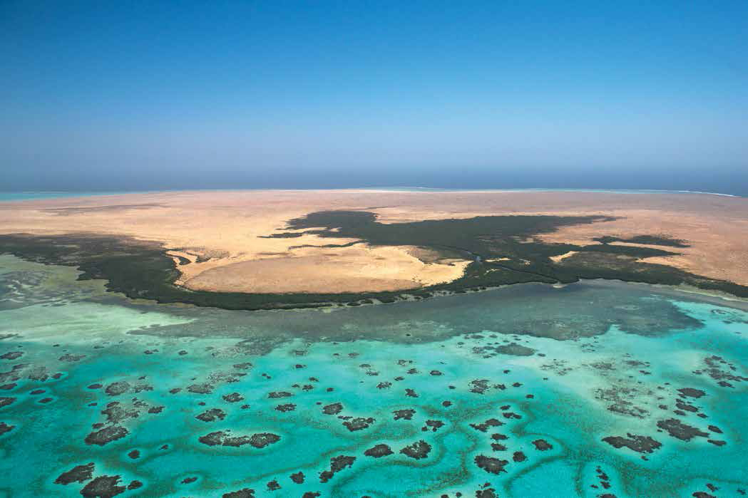 صور اين يقع البحر الاحمر , موقع البحر الاحمر بالنسبه للخريطه