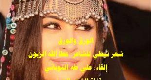 بالصور شعر بدوي غزلي , الغزل في الشعر البدوي unnamed file 37 310x165