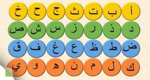 صور الحروف العربيه بالترتيب , حروفى العربيه بترتيب صحيح