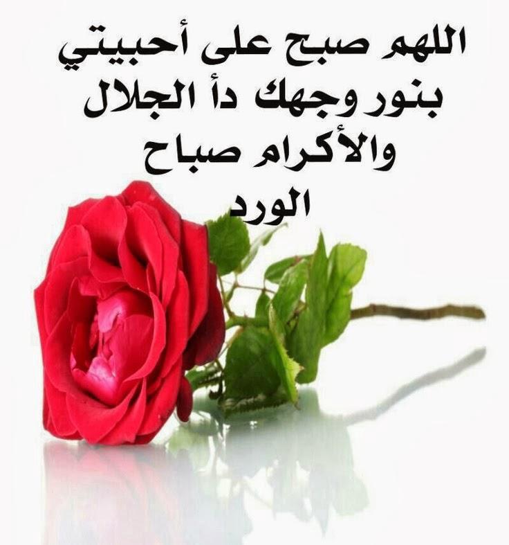 صور رسائل صباح الخير دينية للحبيب , حبيبى اقولها له بدعاء جميل فى الصباح