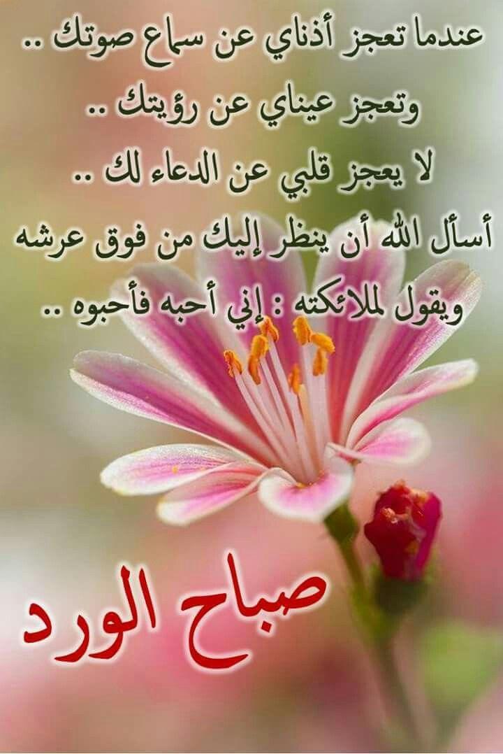 رسائل صباح الخير دينية للحبيب