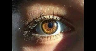 صورة لون العيون العسلي , جمال العيون التى تمون لونها عسلي