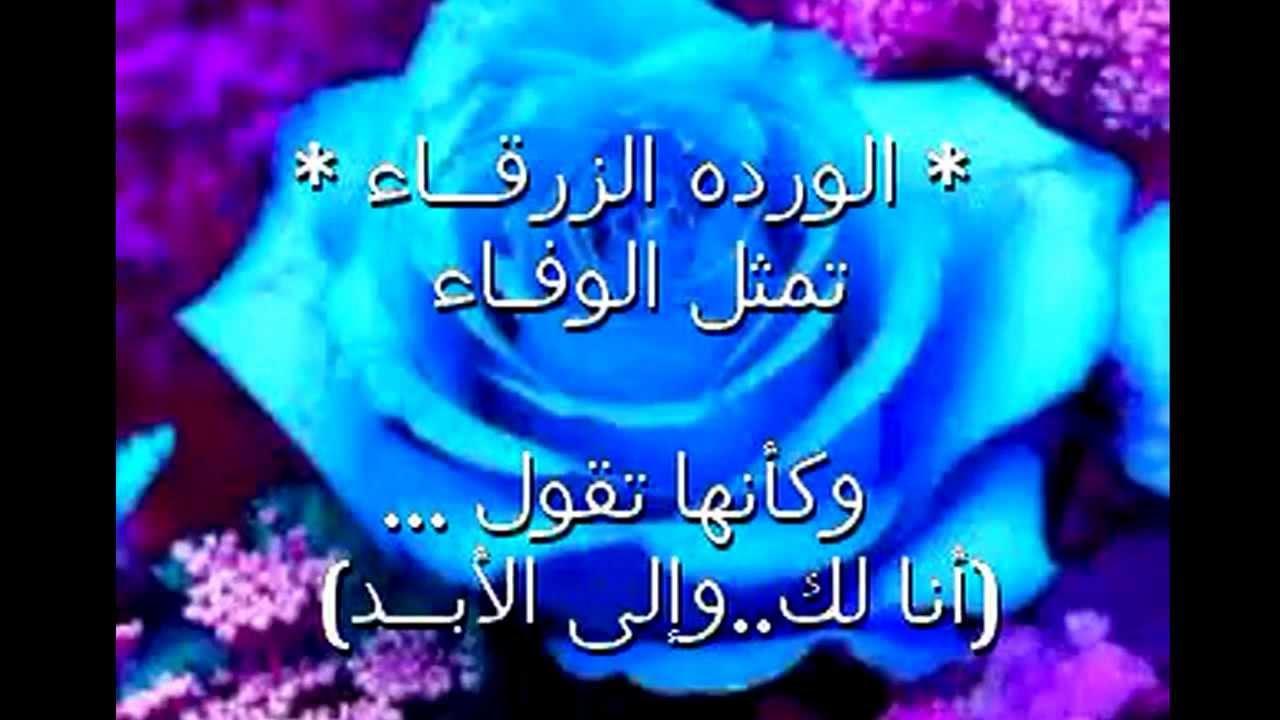صور الوان الورد ومعانيها , الورد والوانه وكل لون وله معنى