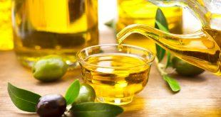 صورة هل زيت الزيتون يزيد الوزن , فوائد زيت الزيتون وعلاقته بالسمنه والنحافه