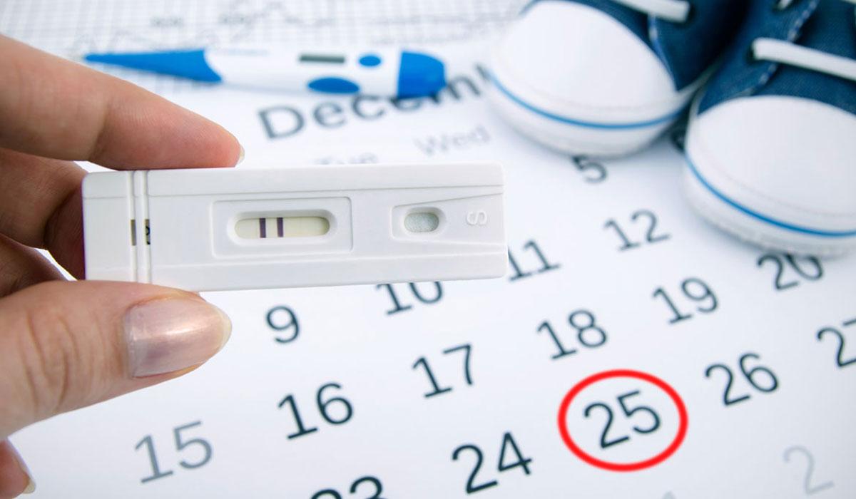 صورة كيف اعرف فترة التبويض , الوقت الصحيح لحدوث الحمل