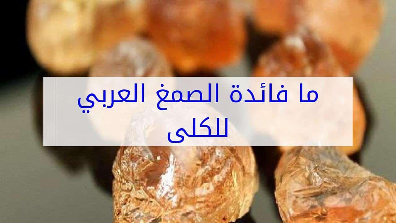 صور فوائد صمغ العربي , ما فوائد وتاثير الصمغ العربى على جسم الانسان