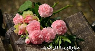 صور تحية صباحية اسلامية , احلى صباح مع كلمه من الاسلام