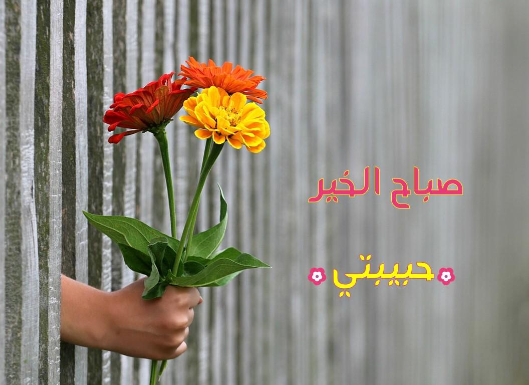 صورة اجمل صباح الخير , مسجات صباح الخير