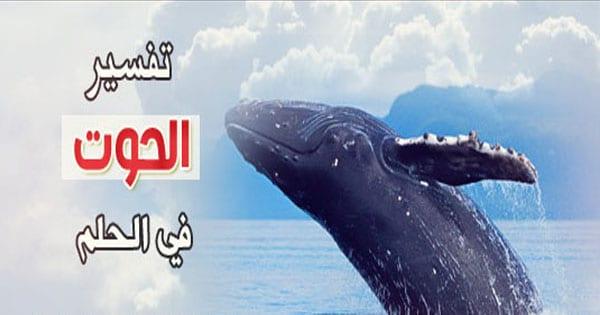 صورة رؤيا الحوت في المنام , ما هو تاويل الحوت فى الحلم