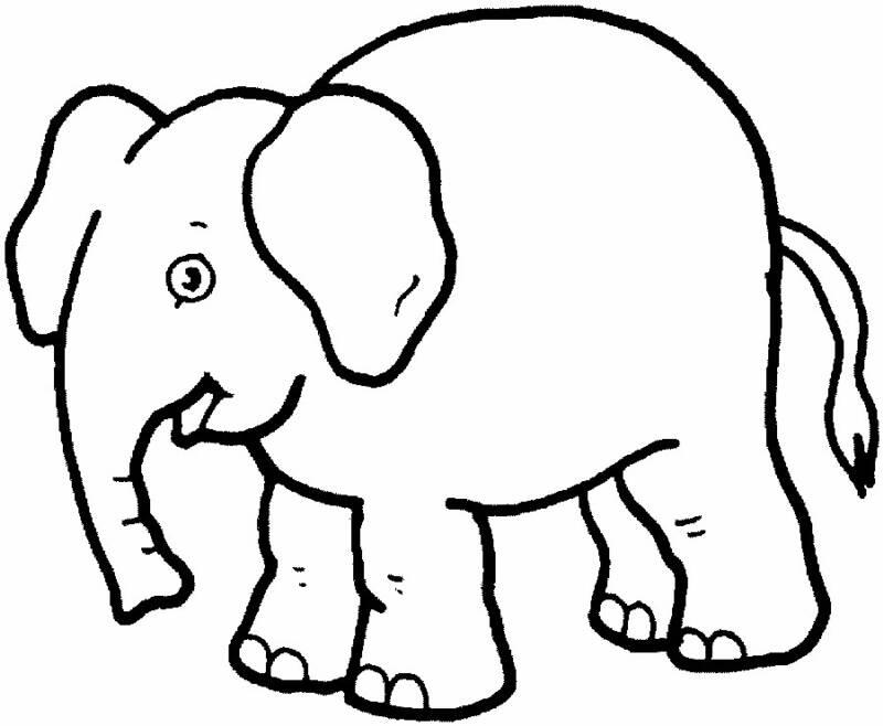 صورة رسومات حيوانات للتلوين , صور حيوانات مرسومه بالرصاص