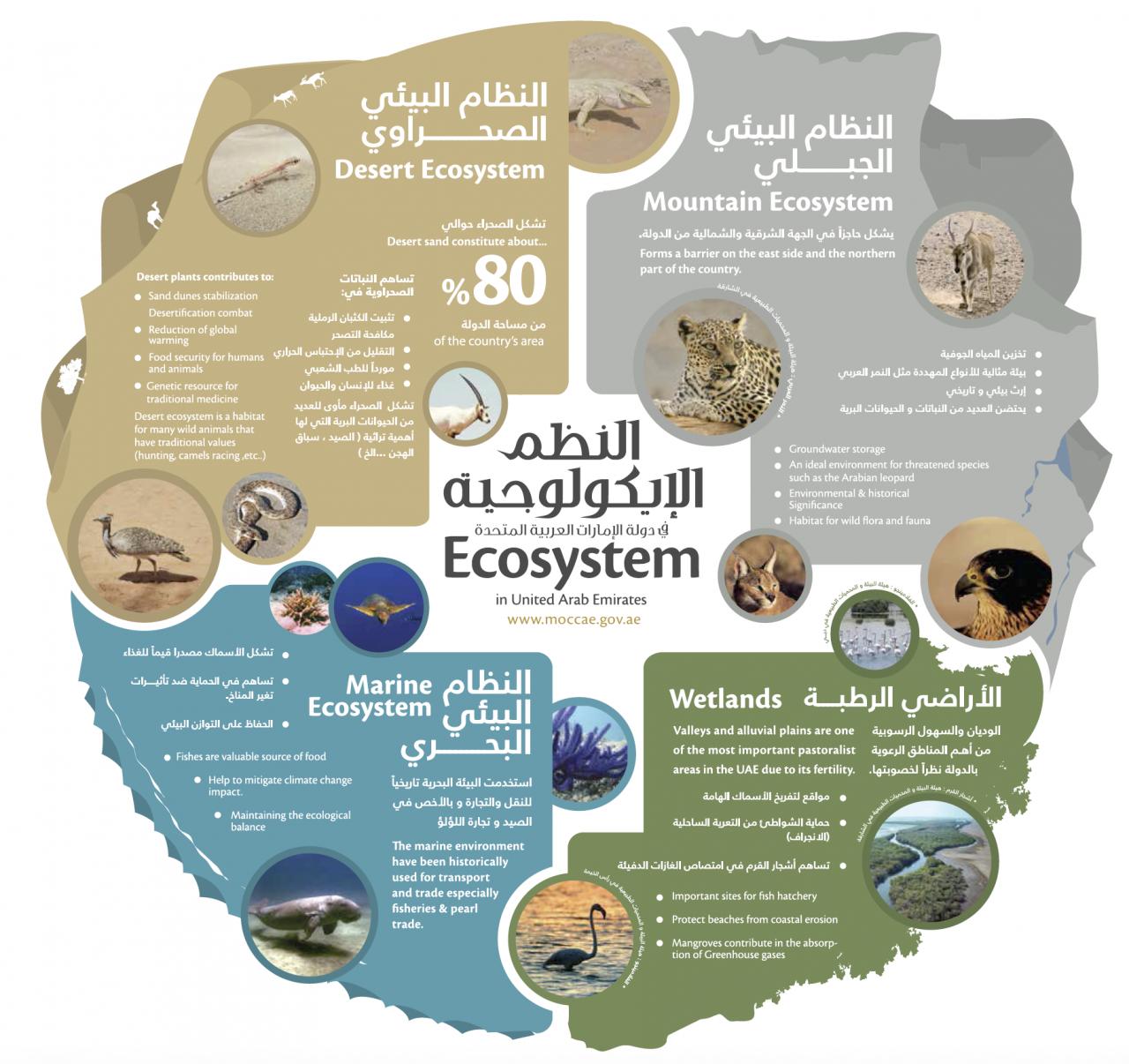 صور معنى كلمة بيولوجي , تفسير عالم البيولوجي