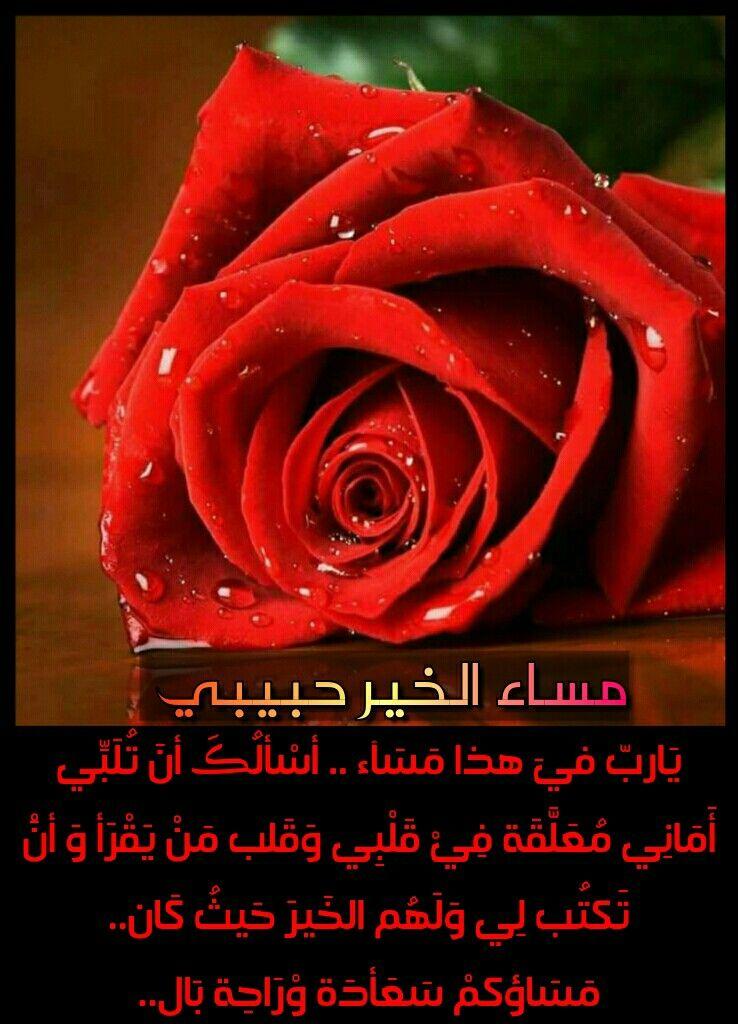 صورة مساء الحب حبيبي , صور مسجات مسائية مميزه