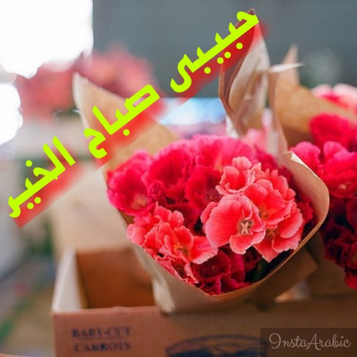 صورة صورصباح الخير حبيبي , احلى صباح لاحلى حبيب على الاطلاق