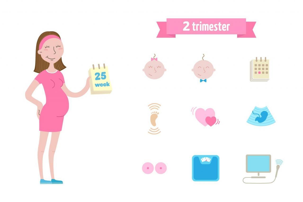 صورة حامل في الشهر السادس , حمل الشهر السادس