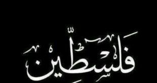 صورة معنى اسم فلسطين , هيا كانت اجمل البلاد