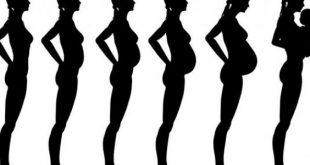 صورة شكل بطن الحامل في الشهر الاول , لا اشعر باننى حامل كيف