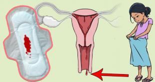 صورة ماهية الدورة الشهرية , تعرفى عى طبيعتك الانثويه وجسمك