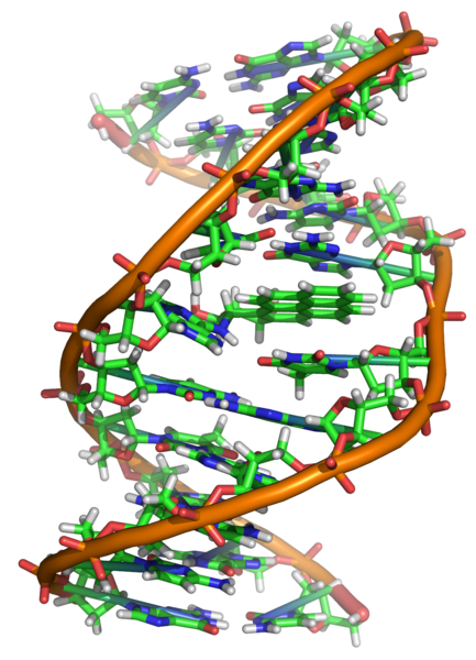 صورة ما هو الجينوم , علم اول مره اسمع انه موجود اصلا