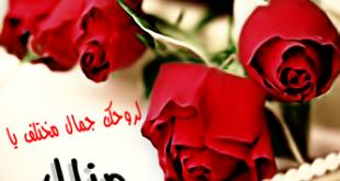 صورة غير الموجود على الانترنت شوف احلى دلع لاسم منال , دلع اسم منال